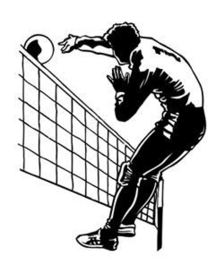 Волейбол картинки черно белый